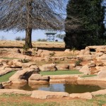 Midlands Saddle and Trout rock garden